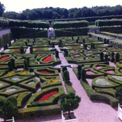 Le jardin de l'amour